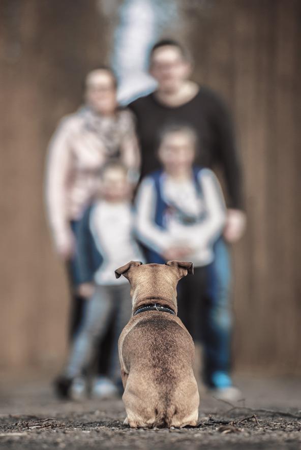 dog-wth-family
