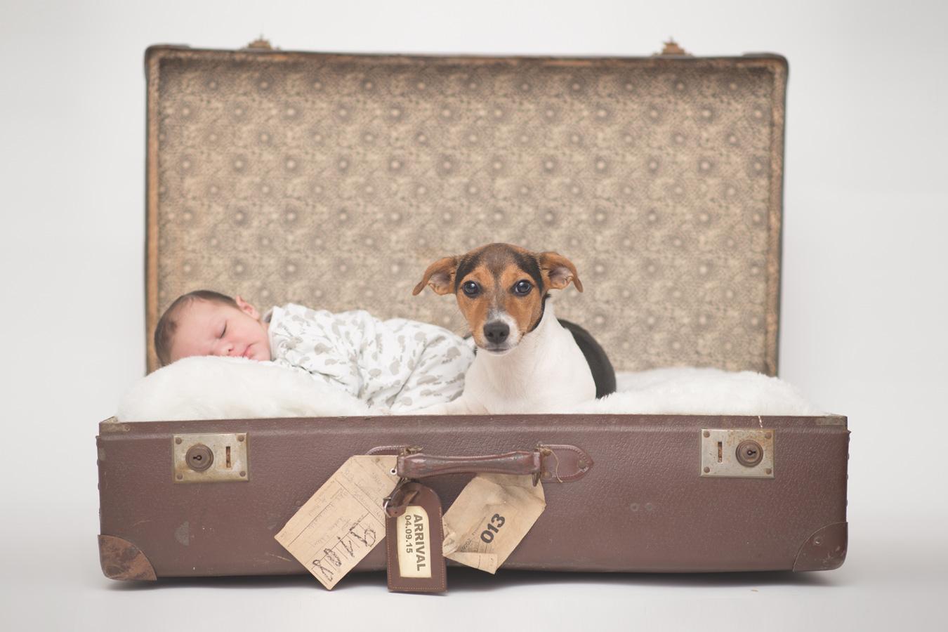 newborn-with-dog