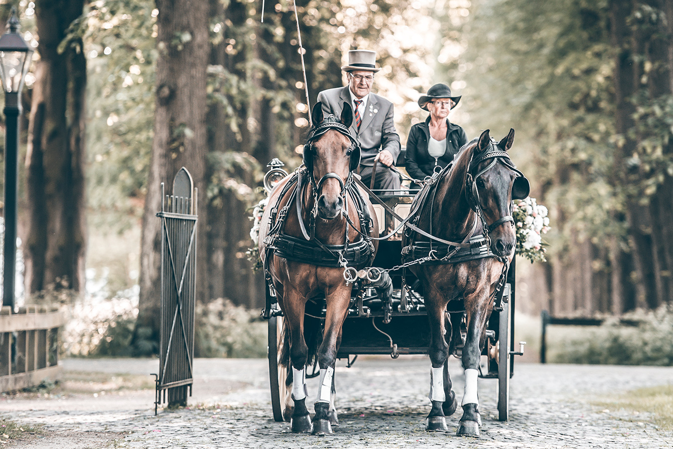 wedding-cart